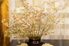 wysuszeni bukietów kwiaty Obraz Stock