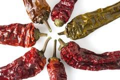 Wysuszeni Chili pieprze - Układający w gwiazdzie zdjęcie stock