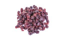 Wysuszeni cranberries Obraz Stock