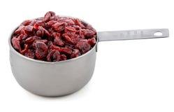 Wysuszeni cranberries przedstawiający w Amerykańskiej metal filiżanki miarze Zdjęcia Stock