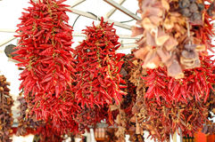 Wysuszeni czerwoni chillies wiesza na rynku Zdjęcie Royalty Free