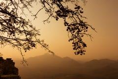 Wysuszeni drzewa z widokami górskimi Zmierzch Obraz Stock