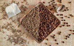 Wysuszeni herbaciani liście i piec kawowe fasole: theine vs kofeina Obraz Royalty Free
