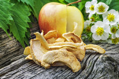 Wysuszeni jabłko plasterki Zdjęcia Stock