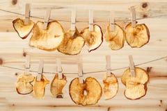 Wysuszeni jabłko plasterki wieszali out na arkanie z clothespins Zdjęcia Royalty Free