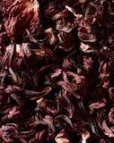 wysuszeni kwiatów poślubnika Jamaica płatki herbaciani Fotografia Stock