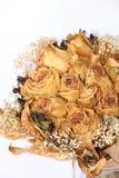 wysuszeni kwiaty Obraz Royalty Free