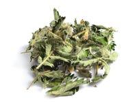 Wysuszeni leczniczy ziele surowi materiały na bielu liście Obraz Stock