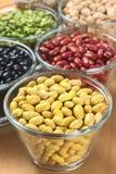 Wysuszeni Legumes Obrazy Royalty Free