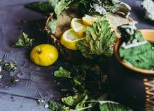 Wysuszeni liście porzeczkowy kłamstwo na szarym tle, sezon zimna, zimno, cytryna segmenty, herbata, herbata dla zimna, ziołowa he Obrazy Royalty Free