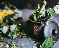 Wysuszeni liście rodzynek w glinianym garnku, cytryny, sezon zimna Zdjęcie Royalty Free