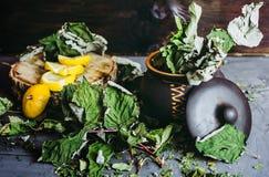 Wysuszeni liście rodzynek w glinianym garnku, cytryny, sezon zimna Obrazy Stock