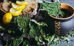 Wysuszeni liście rodzynek w glinianym garnku, cytryny, sezon zimna Fotografia Stock