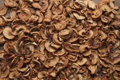 Wysuszeni plasterków jabłka Fotografia Stock