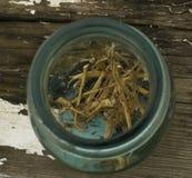 Wysuszeni Pokrzywowi korzenie w rocznika słoju Fotografia Stock
