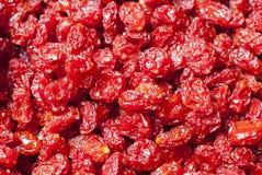 Wysuszeni pomidory Zdjęcie Royalty Free
