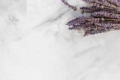 Wysuszeni purpurowi lawenda kwiaty kłaść na białej powierzchni obraz stock