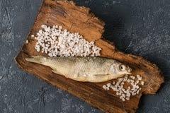 Wysuszeni rybi kłamstwa na zmroku betonują tło Fotografia Royalty Free
