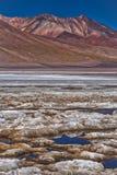 Wysuszeni sól depozyty przy Siloli Boliwia obraz royalty free