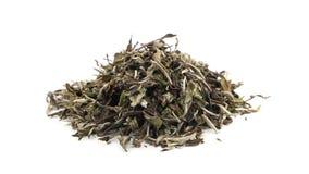 Wysuszeni, surowi biali herbaciani liście wiruje nad białym tłem, zbiory