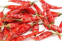 Wysuszeni tajlandzcy chili pieprze na białym tle Obraz Royalty Free