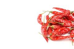 Wysuszeni tajlandzcy chili pieprze odizolowywający na białym tle zdjęcie royalty free