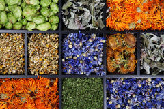 Wysuszeni ziele. zdjęcie stock