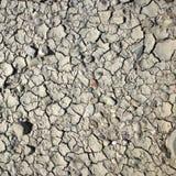 Wysuszona glina wystawia łupanie teksturę na ziemi obrazy royalty free