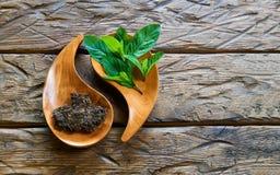 Wysuszona herbata z mennicą Zdjęcie Stock
