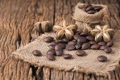 Wysuszona kapsuła sia owoc sacha-Inchi arachid Zdjęcia Stock