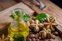 wysuszona kapsuła sia owoc sacha-Inchi arachid na drewnianym stole Obrazy Stock
