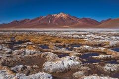 Wysuszona krystalizująca sól w pustynnej niecce, Siloli obrazy stock