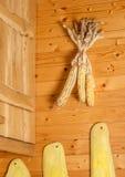 Wysuszona kukurudza na drewnianej ścianie Obrazy Royalty Free