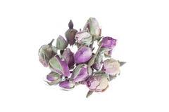 Wysuszona różana kwiat głów Ftom afryka pólnocna dla thea lub kucharstwa Fotografia Royalty Free