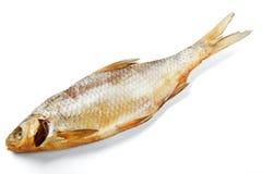 wysuszona ryba Obrazy Royalty Free