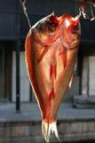 wysuszona ryba Zdjęcia Stock