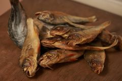 Wysuszona ryba na stole piwna przekąska Zdjęcia Royalty Free