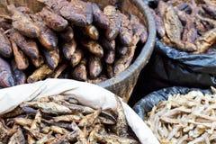 wysuszona rybiego rynku Nepal sprzedaż Fotografia Royalty Free