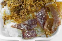 Wysuszona tarta wieprzowina na stickrice Zdjęcia Stock