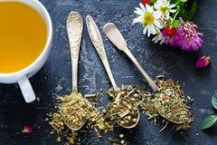 Wysuszona ziołowa herbata w rocznik herbaty łyżkach zdjęcia royalty free