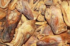Wysuszone dorsz akcyjnej ryba głowy zamykają up, Lofoten, Norwegia, Europa Obrazy Royalty Free