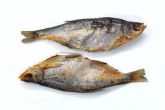 wysuszone leszcz ryba dwa Obraz Stock