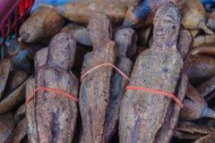 Wysuszone Nariphon owoc dla sprzedaży przy amuletu rynkiem, Tajlandia T Zdjęcie Stock
