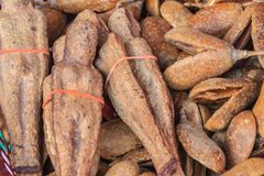 Wysuszone Nariphon owoc dla sprzedaży przy amuletu rynkiem, Tajlandia T Fotografia Royalty Free