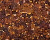 Wysuszone organicznie złote jagody, pęcherzyca Peruviana Obrazy Stock