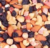 wysuszone owoc Obraz Stock