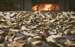 Wysuszone pieczarki na stole na grabie przy tłem z ogieniem Magazyn wysuszone pieczarki Pieczarki blisko podpalają w zima czasie Zdjęcia Royalty Free