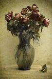 wysuszone róże royalty ilustracja
