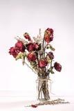 Wysuszone róże w szklanej wazie zdjęcie royalty free