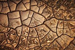 Wysuszonej krakingowej ziemi ziemi tekstury zmielony tło Obrazy Stock